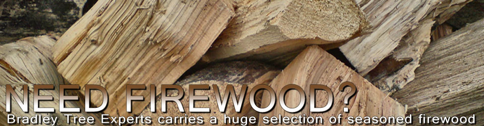 We sell all types of Firewood!