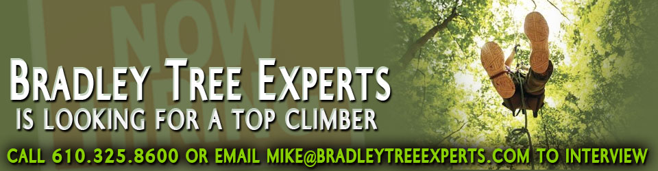 Now Hiring a Top Climber