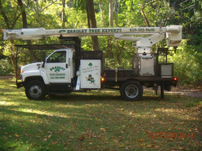 Bradley Tree Experts - Another One of Our Trucks